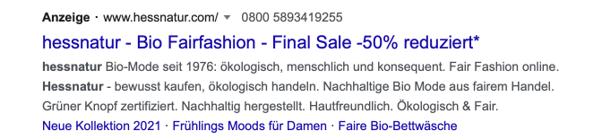 Screenshot einer Google Anzeige mit Callout Erweiterungen